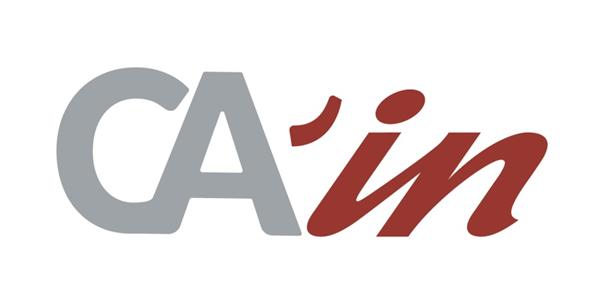 Logo CA'in